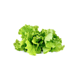Click and Grow Refill 3-Pack - Green Lettuce