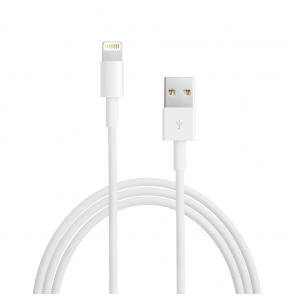 Apple Lightning to USB Cable (0.5m)
