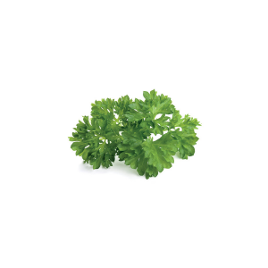 Click and Grow Parsley Refill 3-Pack