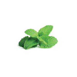 Click and Grow Refill 3-Pack - Peppermint